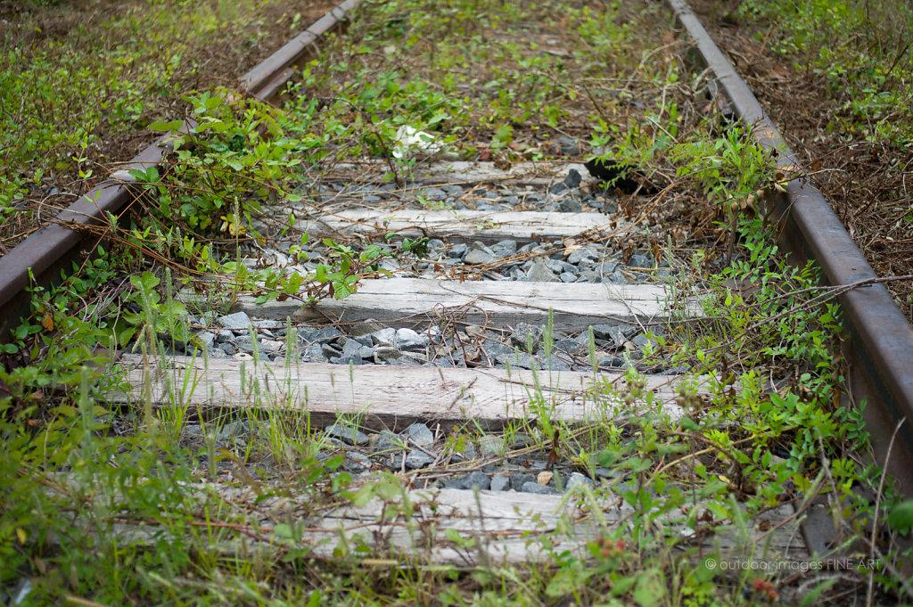 Old Tracks 1
