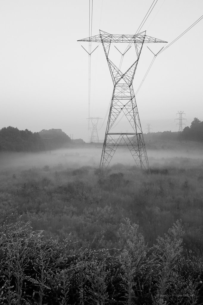 Power Lines in Low Fog 1