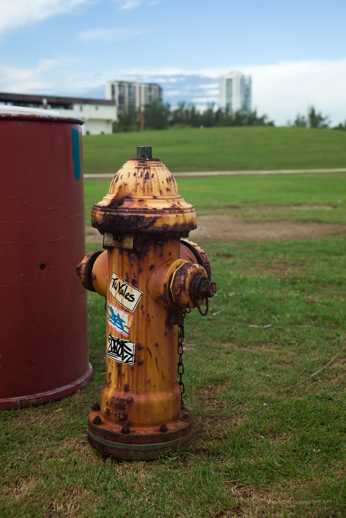 Graffiti Hydrant
