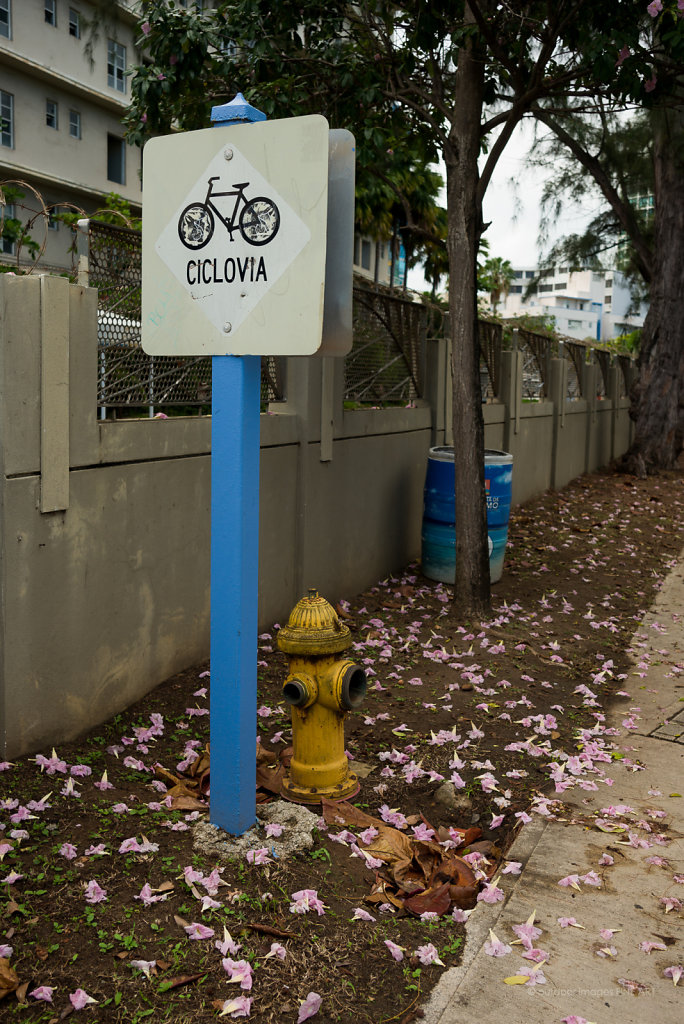 Bicycle Path with Hydrant